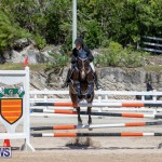 FEI Jumping World Challenge Competition 3 Bermuda, March 9 2019-0041