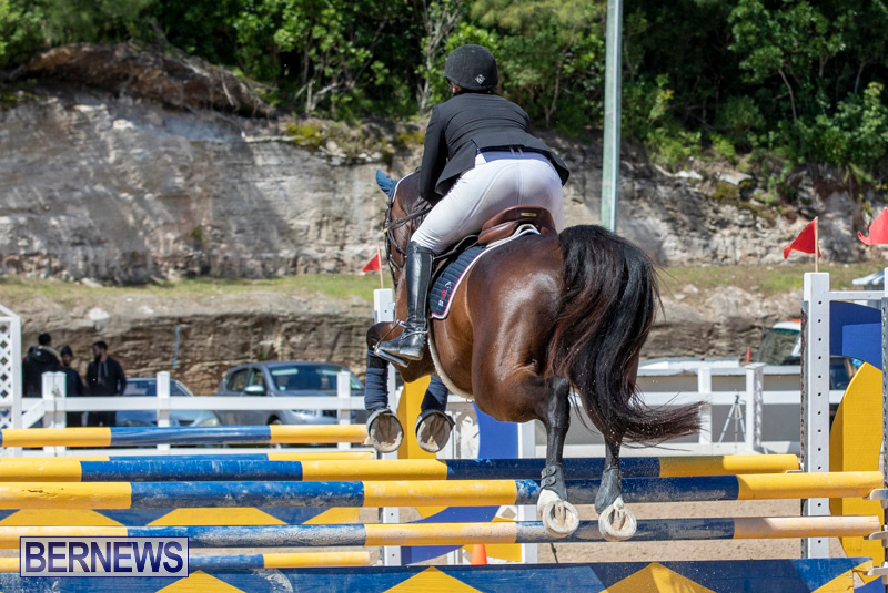 FEI-Jumping-World-Challenge-Competition-3-Bermuda-March-9-2019-0046