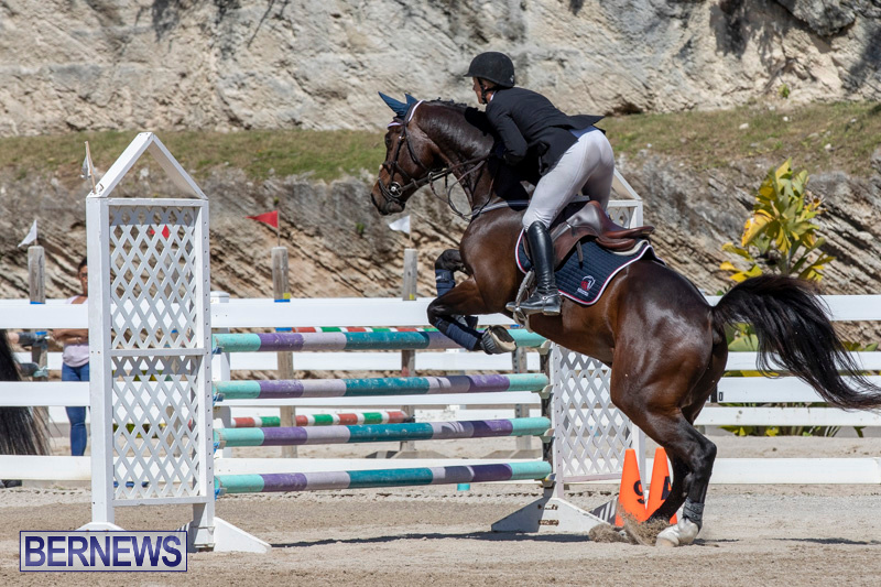 FEI-Jumping-World-Challenge-Competition-3-Bermuda-March-9-2019-0053