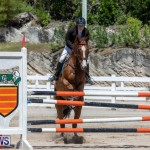 FEI Jumping World Challenge Competition 3 Bermuda, March 9 2019-0080