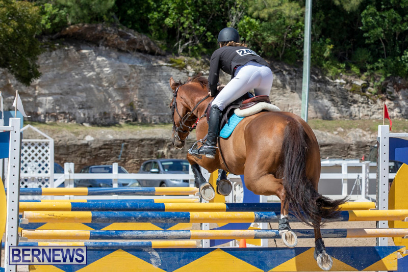 FEI-Jumping-World-Challenge-Competition-3-Bermuda-March-9-2019-0087