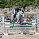 FEI Jumping World Challenge Competition 3 Bermuda, March 9 2019-0110