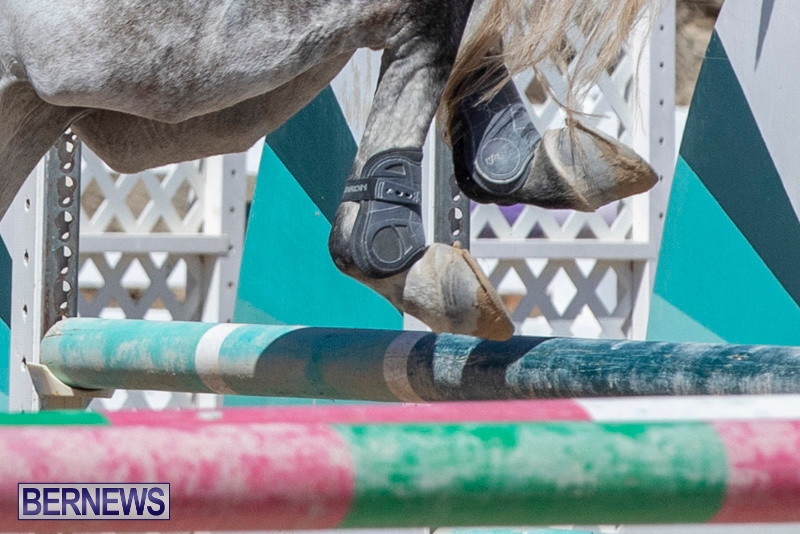 FEI-Jumping-World-Challenge-Competition-3-Bermuda-March-9-2019-0119