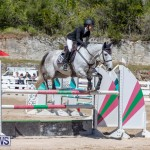 FEI Jumping World Challenge Competition 3 Bermuda, March 9 2019-0126