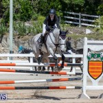 FEI Jumping World Challenge Competition 3 Bermuda, March 9 2019-0136
