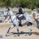 FEI Jumping World Challenge Competition 3 Bermuda, March 9 2019-0142