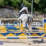 FEI Jumping World Challenge Competition 3 Bermuda, March 9 2019-0147