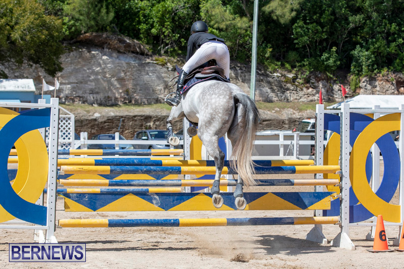 FEI-Jumping-World-Challenge-Competition-3-Bermuda-March-9-2019-0147