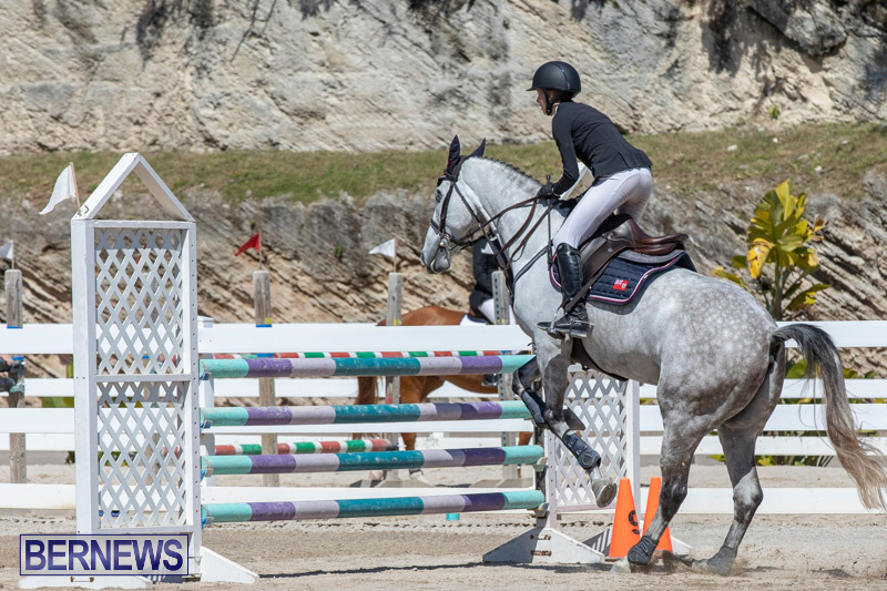 FEI-Jumping-World-Challenge-Competition-3-Bermuda-March-9-2019-0150