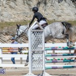 FEI Jumping World Challenge Competition 3 Bermuda, March 9 2019-0153