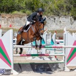 FEI Jumping World Challenge Competition 3 Bermuda, March 9 2019-0168