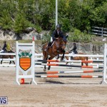 FEI Jumping World Challenge Competition 3 Bermuda, March 9 2019-0174
