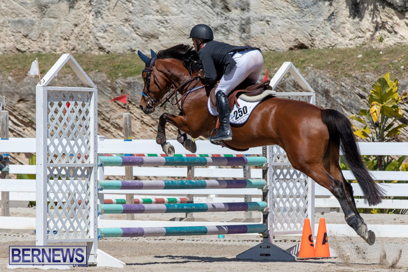 FEI-Jumping-World-Challenge-Competition-3-Bermuda-March-9-2019-0184