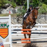 FEI Jumping World Challenge Competition 3 Bermuda, March 9 2019-0206