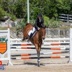 FEI Jumping World Challenge Competition 3 Bermuda, March 9 2019-0208