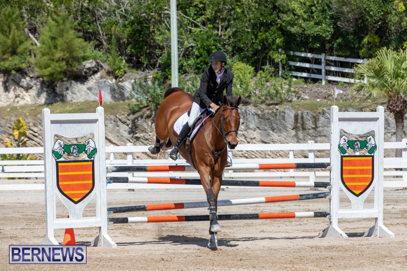 FEI-Jumping-World-Challenge-Competition-3-Bermuda-March-9-2019-0208