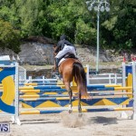 FEI Jumping World Challenge Competition 3 Bermuda, March 9 2019-0210