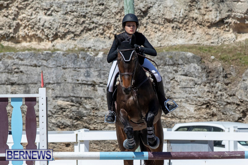 FEI-Jumping-World-Challenge-Competition-3-Bermuda-March-9-2019-0218