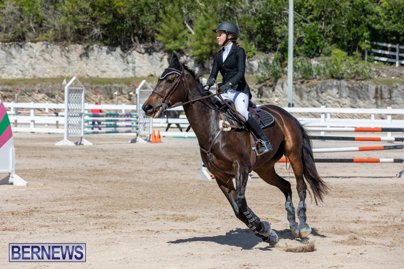 FEI-Jumping-World-Challenge-Competition-3-Bermuda-March-9-2019-0233
