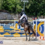 FEI Jumping World Challenge Competition 3 Bermuda, March 9 2019-0235