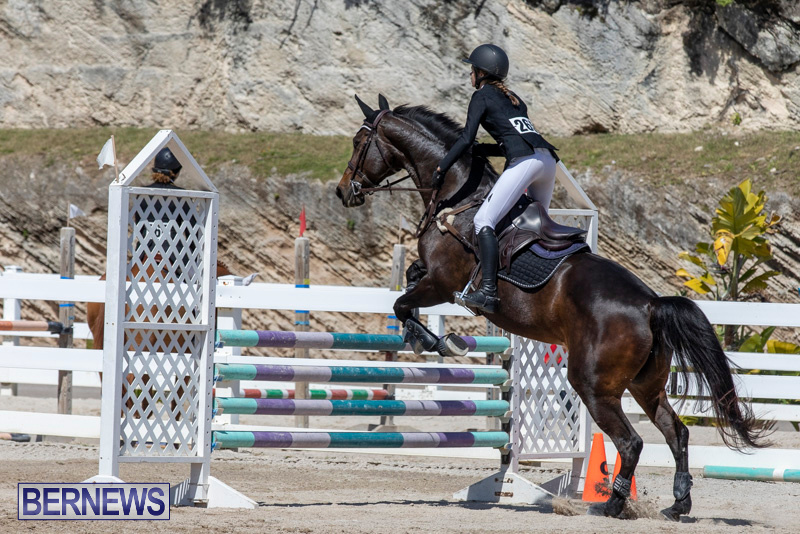 FEI-Jumping-World-Challenge-Competition-3-Bermuda-March-9-2019-0240