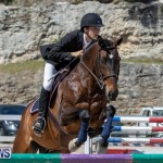 FEI Jumping World Challenge Competition 3 Bermuda, March 9 2019-0248