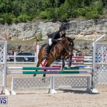 FEI Jumping World Challenge Competition 3 Bermuda, March 9 2019-0249