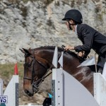 FEI Jumping World Challenge Competition 3 Bermuda, March 9 2019-0253