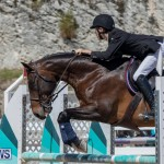 FEI Jumping World Challenge Competition 3 Bermuda, March 9 2019-0254