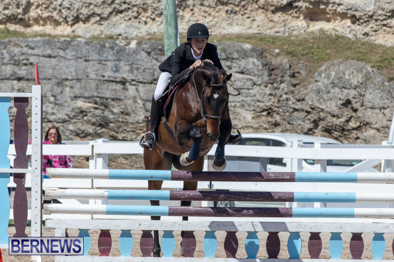 FEI-Jumping-World-Challenge-Competition-3-Bermuda-March-9-2019-0258