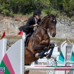 FEI Jumping World Challenge Competition 3 Bermuda, March 9 2019-0263