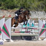 FEI Jumping World Challenge Competition 3 Bermuda, March 9 2019-0264