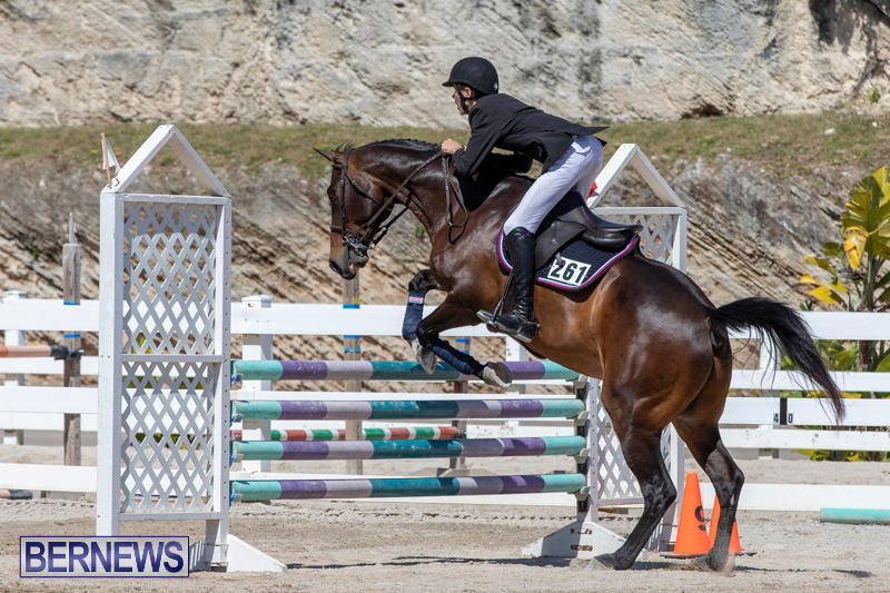 FEI-Jumping-World-Challenge-Competition-3-Bermuda-March-9-2019-0291