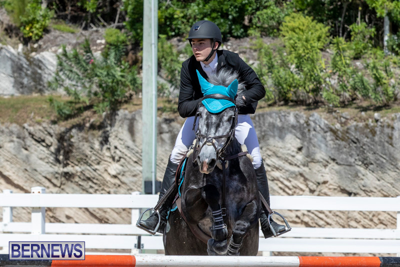 FEI-Jumping-World-Challenge-Competition-3-Bermuda-March-9-2019-0325