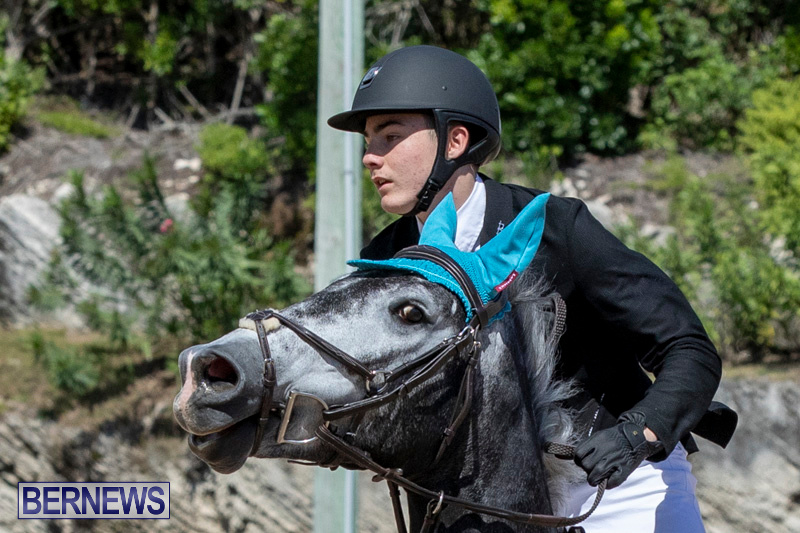 FEI-Jumping-World-Challenge-Competition-3-Bermuda-March-9-2019-0330