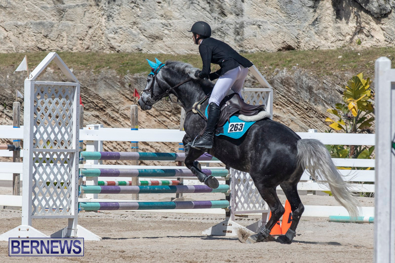 FEI-Jumping-World-Challenge-Competition-3-Bermuda-March-9-2019-0338