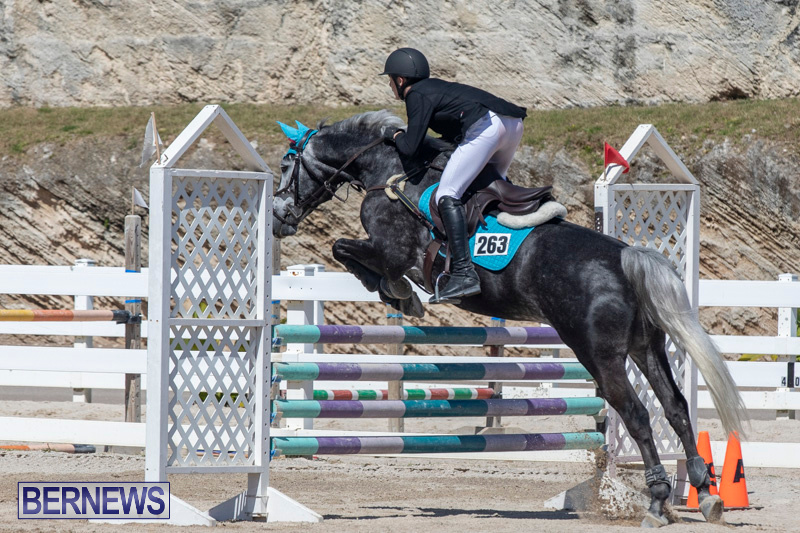 FEI-Jumping-World-Challenge-Competition-3-Bermuda-March-9-2019-0339