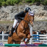 FEI Jumping World Challenge Competition 3 Bermuda, March 9 2019-0348