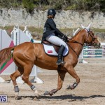 FEI Jumping World Challenge Competition 3 Bermuda, March 9 2019-0353