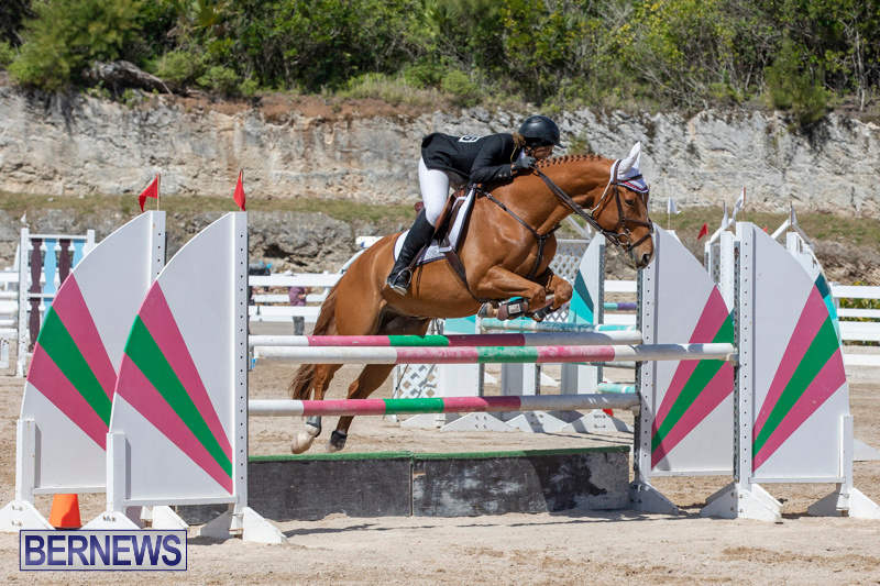 FEI-Jumping-World-Challenge-Competition-3-Bermuda-March-9-2019-0368
