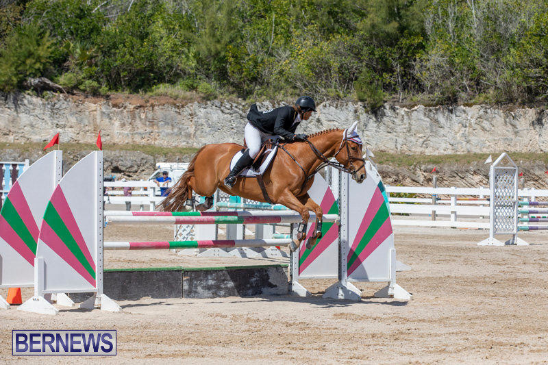 FEI-Jumping-World-Challenge-Competition-3-Bermuda-March-9-2019-0369