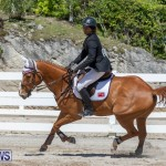 FEI Jumping World Challenge Competition 3 Bermuda, March 9 2019-0375