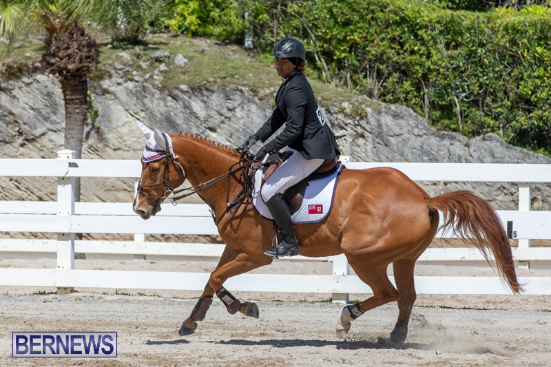 FEI-Jumping-World-Challenge-Competition-3-Bermuda-March-9-2019-0375