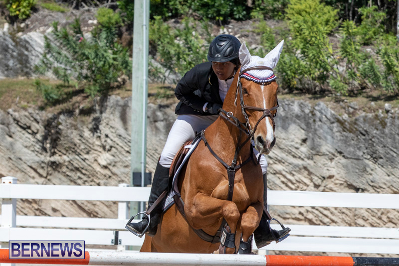 FEI-Jumping-World-Challenge-Competition-3-Bermuda-March-9-2019-0378