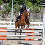 FEI Jumping World Challenge Competition 3 Bermuda, March 9 2019-0379