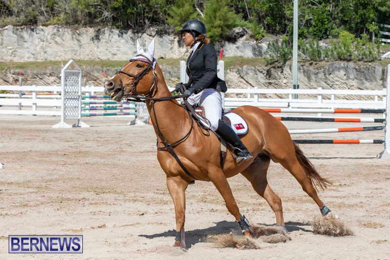 FEI-Jumping-World-Challenge-Competition-3-Bermuda-March-9-2019-0385