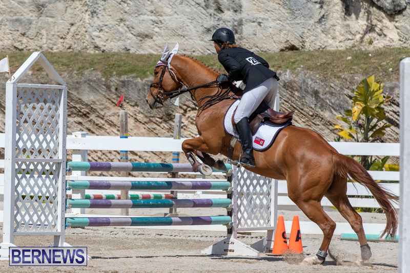 FEI-Jumping-World-Challenge-Competition-3-Bermuda-March-9-2019-0396