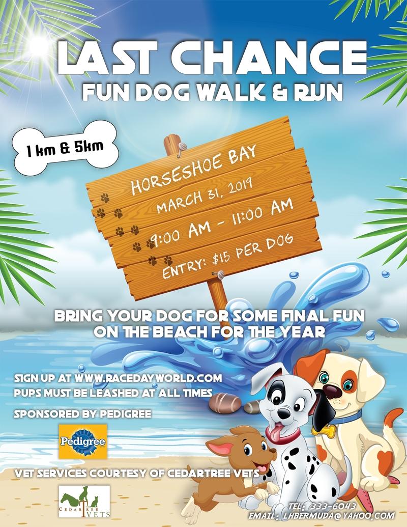 Last Chance Dog run flyer