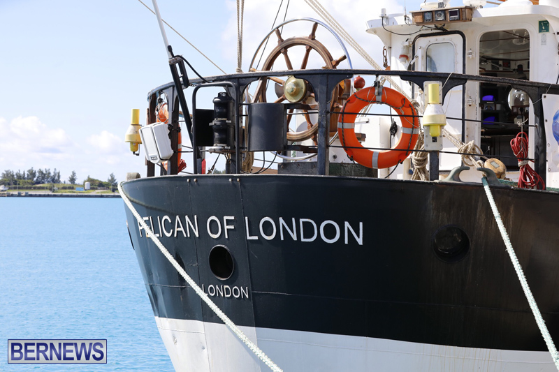 Pelican of London Bermuda March 15 2019 (13)