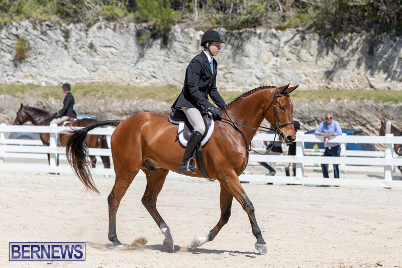 RES Hunter Jumper Show Bermuda, March 16 2019-0550